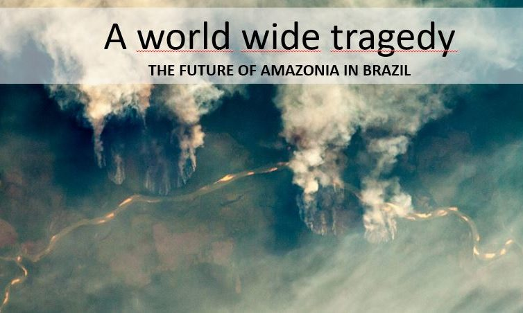 Save Amazonia